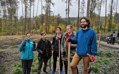 Sázíme lesy nové generace